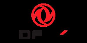 logo dfsk - cliente de google analytics de Cristian Abud, consultor de marketing digital.